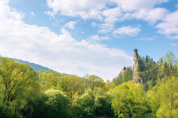 Orava Castle on the high steep rock. one of the most beautiful castles in Slovakia. mountain landscape on a wonderful sunny day. trees in green foliage. popular travel destination