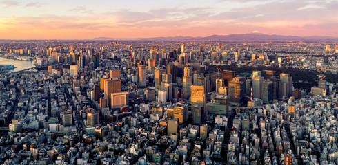 Dawn shot of central of Taokyo, Japan