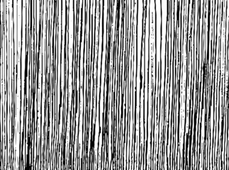 Criss-cross lines texture. Parallel and intersecting lines abstract pattern. Abstract textured effect. Black isolated on white background.Vector illustration. EPS10.