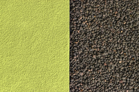 Matcha and babchi (Psoralea Corylifolia) seed textures close up view from top. Half screen, flat lay, space for text, design template. Matcha and Bakuchiol in cosmetics concept.