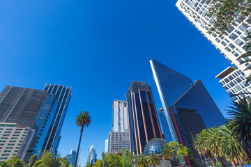 Mexico City Financial center and business district close to Paseo De Reforma