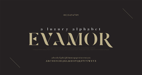 Elegant luxury alphabet letters font and number. Classic Lettering Minimal Fashion Designs. Typography fonts regular uppercase and lowercase. vector illustration