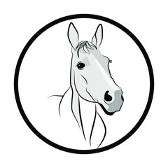 Horse figure in dark lines. Horse head on a white background. Muzzle of a white horse in half a turn.