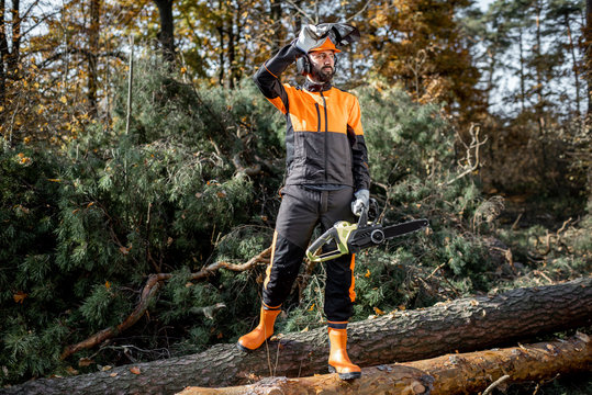 Full length portrait of a professional lumberjack in protective workwear standing with a chainsaw on the logs in the forest