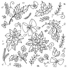 Traditional xmas decoration holly and poinsettia. Hand drawn design elements.