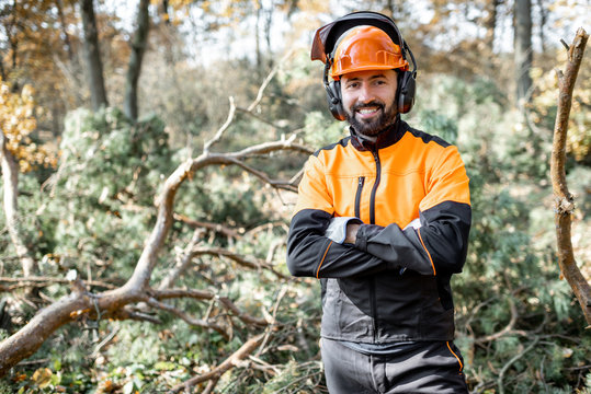 Waist-up portrait of a professional lumberman in harhat and protective workwear standing in the pine forest