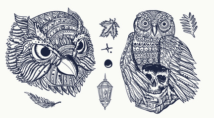 Owls heads. Old school tattoo set. Fairy tale art. Magic birds, traditional tattooing style