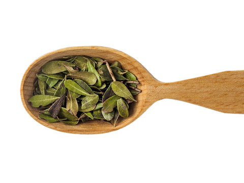 Dry leaves of Arctostaphylos in a wooden spoon on a white background