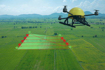 Wall Mural - smart farming concept, drone use a technology in agriculture with artificial intelligence to measure the area, photographer, and fly follow the line and send the data back to farmer in cloud system