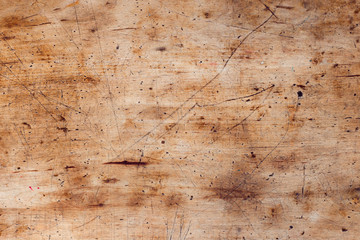 texture of bark wood use as natural background copy space