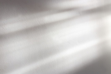 background of organic shadow over white textured wall
