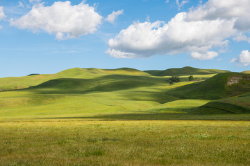 Idyllic scene of green grassy hills dotted with light and shadow from fluffy white clouds in a beautiful blue sky