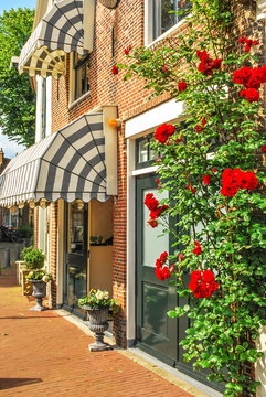 Cozy street of  European city decorated with roses