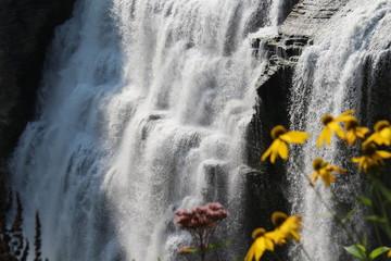 Cascading waterfall in the Finger Lakes regioan Wall mural