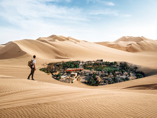 A man finds an oasis in the desert
