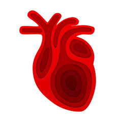 Vector red picture of human heart in paper art style. EPS 10