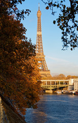 Beautiful view of autumn tree with the Eiffel tower in the foreground in Paris.