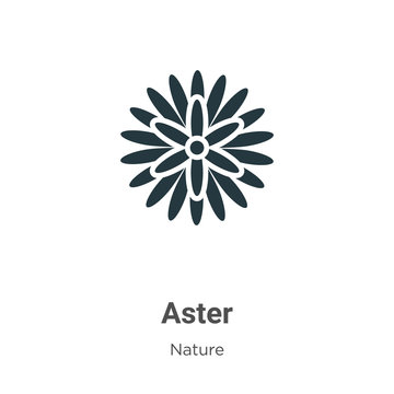 Aster vector icon on white background. Flat vector aster icon symbol sign from modern nature collection for mobile concept and web apps design.