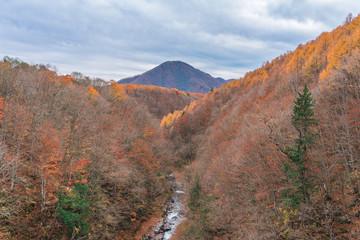 Spoed Foto op Canvas Grijze traf. Nakatsugawa bridge panorama landscape at Fukushima in autumn Japan