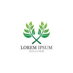 Healthy logo natural leaf