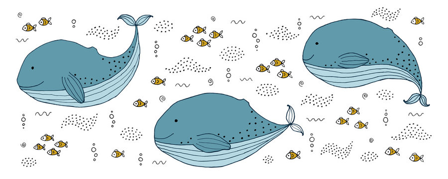 Drawing - funny whale and hand drawn elements