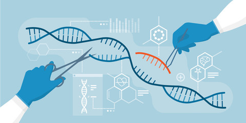 DNA and genome editing