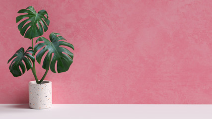 Tropical leaves on pink background copy space. Monstera plant pot houseplant minimal composition. 3d rendering. Fotomurales