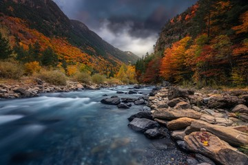 Aluminium Prints Forest river Breathtaking shot of a river in the forest with colorful trees under the cloudy sky in autumn