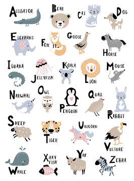 Animal alphabet for kids education. Childish vector poster for home decor.