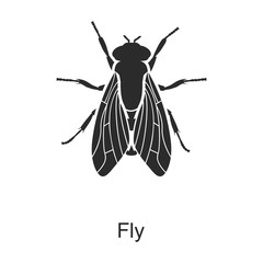 Insect fly vector icon.Black vector icon isolated on white background insect fly .
