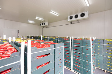 Red Peppers Cold Storage