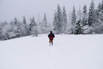 Fototapete - Hiker walking alone through snow covered field in winter