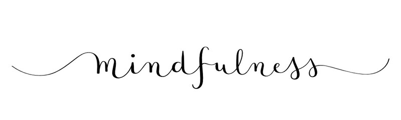 MINDFULNESS black vector brush calligraphy banner with swashes