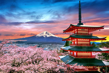 Poster Salmon Cherry blossoms in spring, Chureito pagoda and Fuji mountain at sunset in Japan.