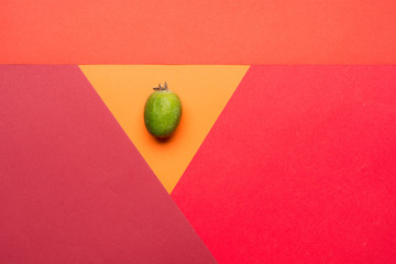 Feijoa fruit on colorful background. Top view pop art minimal flat lay style.