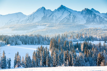 Foto op Canvas Alpen Scenic winter morning in mountains