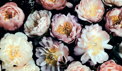 Poster Bloemen Vintage bouquet of beautiful peonies on black. Floral background. Baroque old fashiones style. Natural flowers pattern wallpaper or greeting card