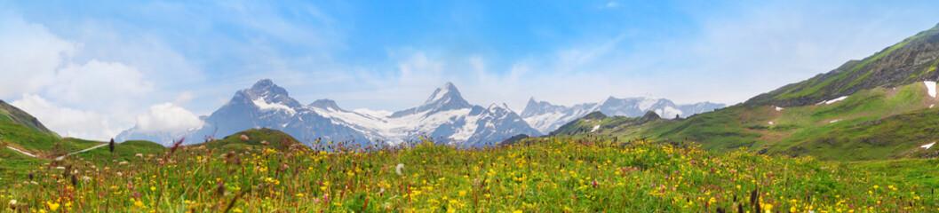 Foto auf Leinwand Himmelblau Alpine peaks of Grindelwald and Jungfrau. Landskape background of Bernese highland. Alps, tourism, journey, hiking concept.