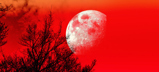 Photo sur Plexiglas Rouge Red Moon Background - Collage with elements furnished by NASA.