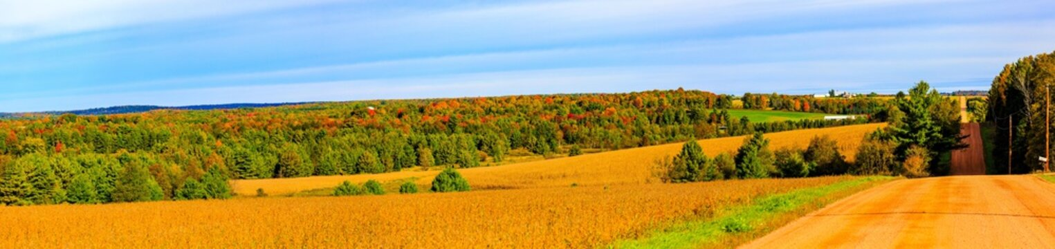 Wisconsin country road, farm fields and woodland in September