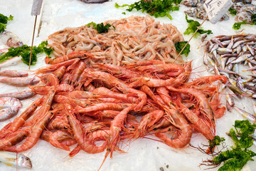 Fresh shrimps for sale a market in Naples, Italy