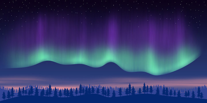 Fantasy on the theme of the northern landscape. Night and polar lights. Vector illustration, EPS10