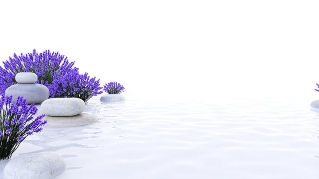 3d rendered spa illustration - lavender