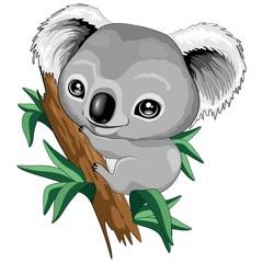 Poster Draw Koala Baby Cute Cartoon Character Vector Illustration