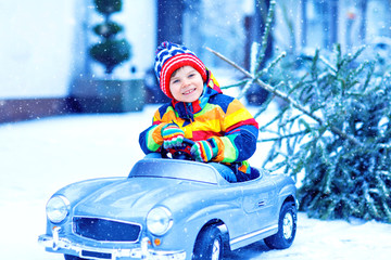 Beautiful little smiling kid boy driving toy car with Christmas tree. Happy child in winter fashion clothes bringing hewed xmas tree from snowy forest. Family, tradition, holiday.