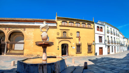 Street view with museum of Fine Arts on Plaza del Potro in Cordoba. Andalusia, Spain