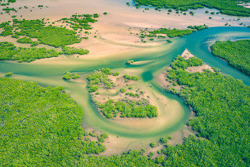 Foto auf Acrylglas Landschaft Senegal Mangroves. Aerial view of mangrove forest in the Saloum Delta National Park, Joal Fadiout, Senegal. Photo made by drone from above. Africa Natural Landscape.