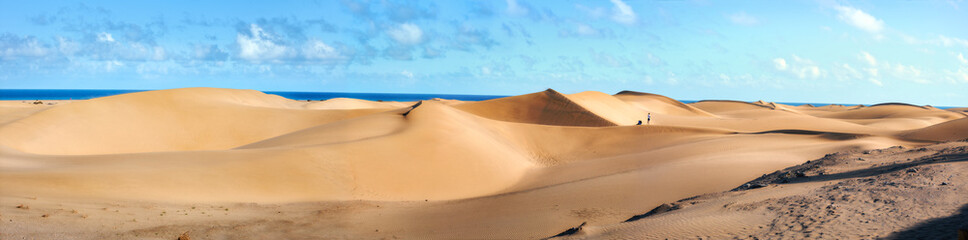 Deurstickers Canarische Eilanden National park of Maspalomas sand dunes. Gran Canaria, Canary islands, Spain