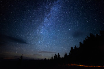 Milky way long exposure astrophotography night sky with stars outdoor scene in mountains forrest. Adventure lifestyle astronomy concept. Cosmic atmosphere universe landcape. Fotomurales