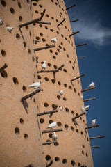 Traditional pigeon towers in Doha, Qatar